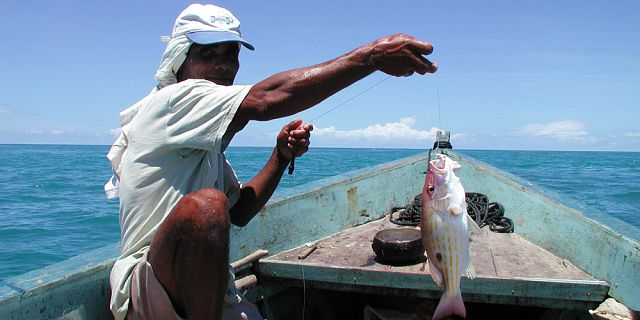 Fishing in the rodriguan lagoon (2)